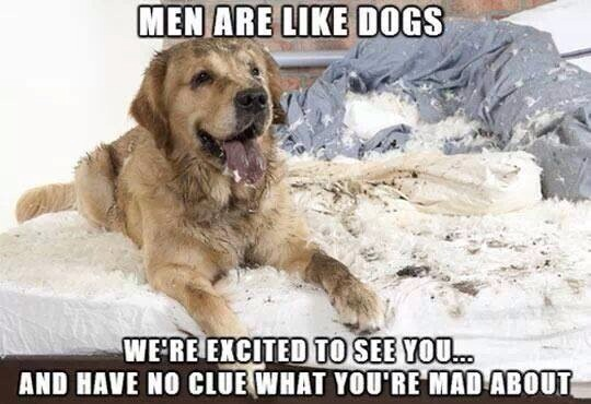 Men are like dogs